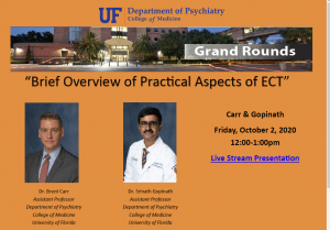 Brief Overview of Practical Aspects of ECT